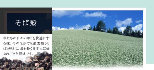 そば殻 私たちの日々の眠りを快適にする枕。 そのなかでも蕎麦殻(そばがら)は、最も長く日本人に好まれてきた素材です。